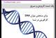 آیا شما DNA کارآفرینی دارید؟