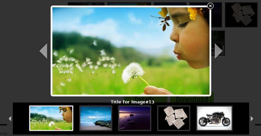 اندازه و کیفیت تصویر در وردپرس