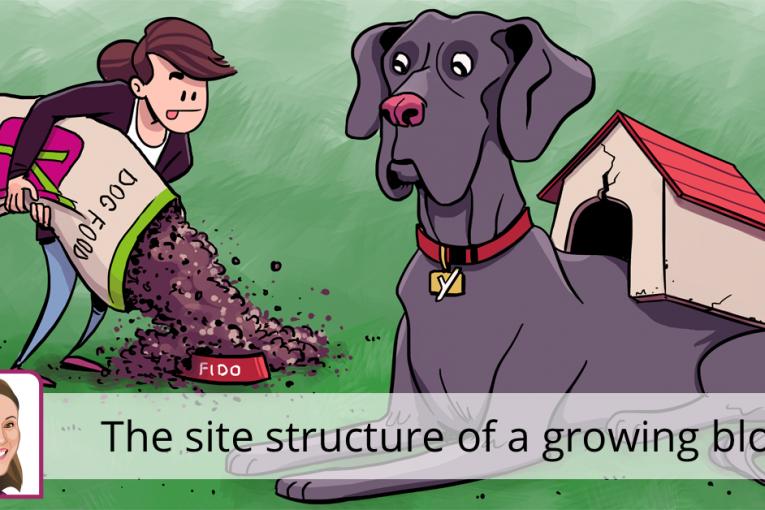 ساختار سایت وبلاگ در حال رشد چگونه است