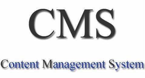 تفاوت بین وبلاگ و CMS