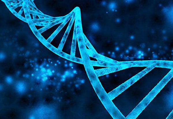 DNA کارآفرینی
