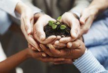 مسئولیت پذیری در موفقیت کارآفرینی